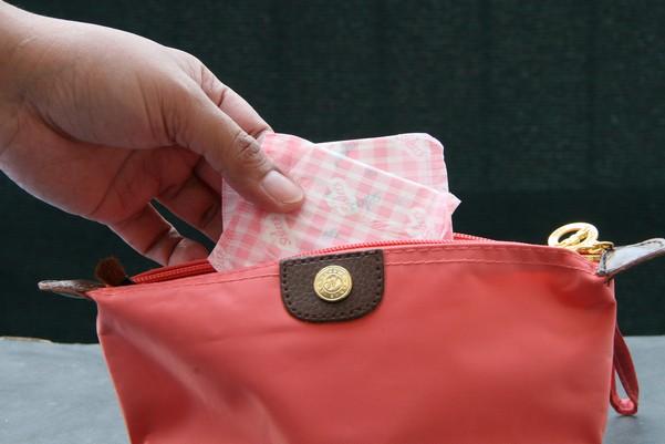 запаска в сумке